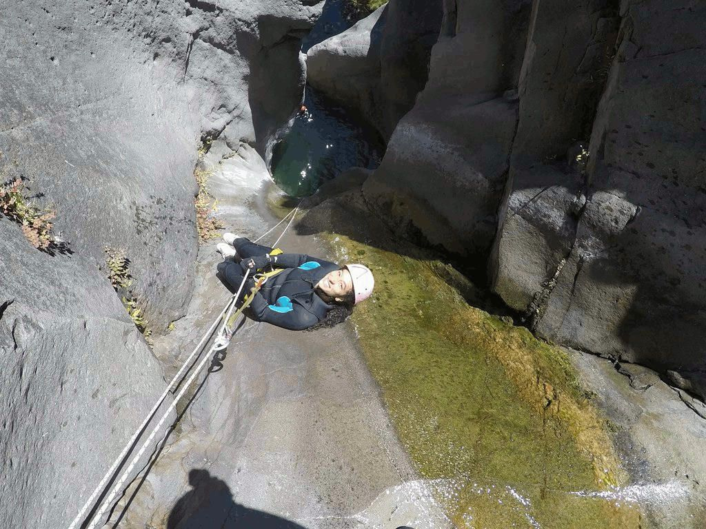 fleur-jaune-canyon-canyoning-cilaos-reunion-canyoneering-kloofing